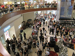 Over 140 million people will be shopping for bargains this Black Friday. Sprinkled in among those millions of bargain hunters will be thousands of criminals looking to pick up a few gifts at your expense. Insane by Kevinspencer